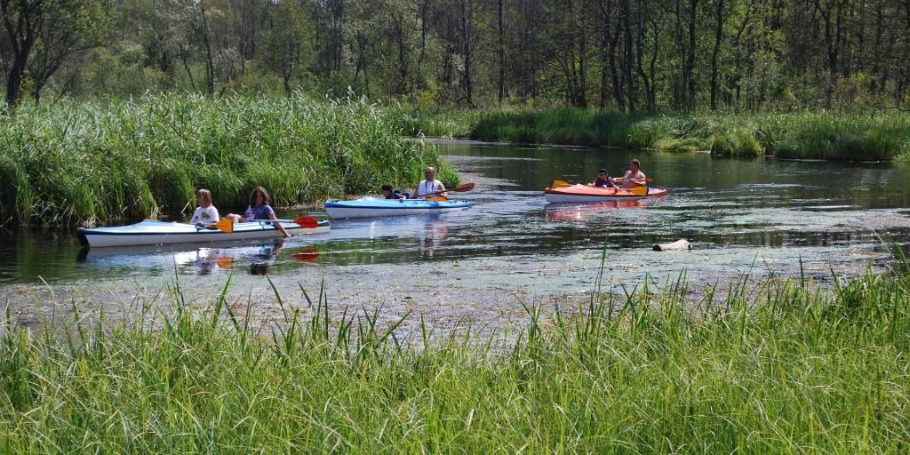 spływ kajakowy Regą